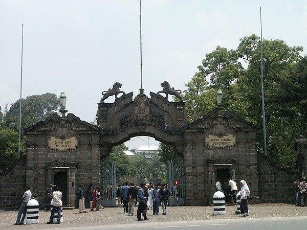 Federal police _ Ethiopia _ University