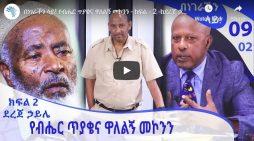 An Eyewitness talks about hijacked Ethiopian Airlines plane,Walleligne Mekonnen