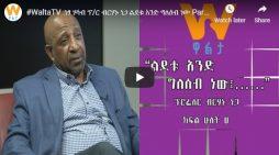 Berhanu Nega Interview with Walta TV