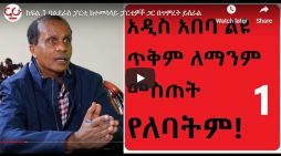 Addis Ababa should never grant special privilege to anyone, says Eskinder Nega