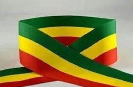 Ethiopia _ flag