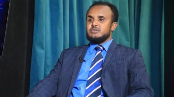 National Movement of Amhara elects new chairperson