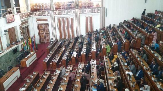 Ethiopia passes hate speech, disinformation legislation