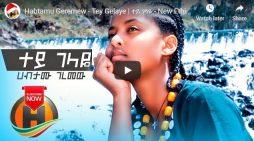 New Ethiopian Music 2020 Habtamu Geremew – Tey Gelaye
