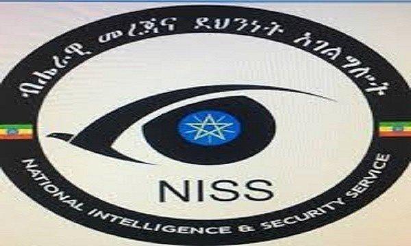 Ethiopian Intelligence _ illegal arms