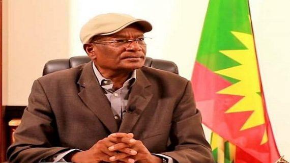 Ethiopia: 2 Oromo nationalist organizations blast the Board for postponing the election