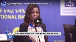 Ethiopia's Constitutional Inquiry Commission hearing – part I &II