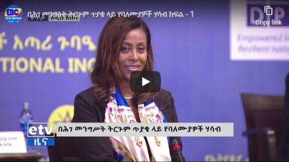 Ethiopia's Constitutional Inquiry Commission hearing – part I &II