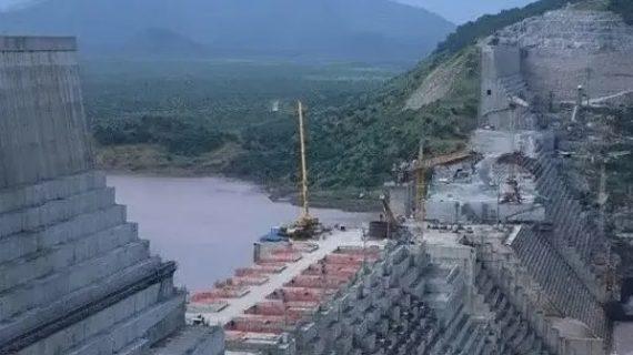Egypt agrees with proposal to return to tripartite talk on Ethiopian Dam
