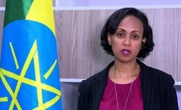 Ethiopia Coronavirus _ Update _ Dr Lia