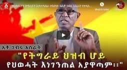 Secession of Tigray risky, says Gebru Asrat
