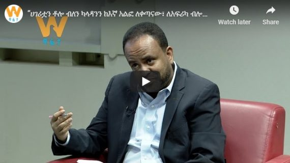 Unless we rescue Ethiopia, impending danger would affect the region and beyond, Zadig Abraha