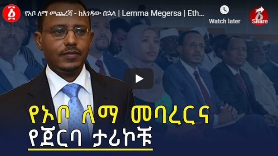 Lemma Megersa's background,his termination from PP