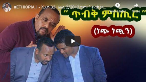 Shimelis Abdisa 's leaked audio, Prosperity Party political agenda