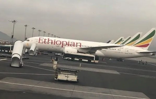 Ethiopia holds off Ethiopian Airlines privatization scheme