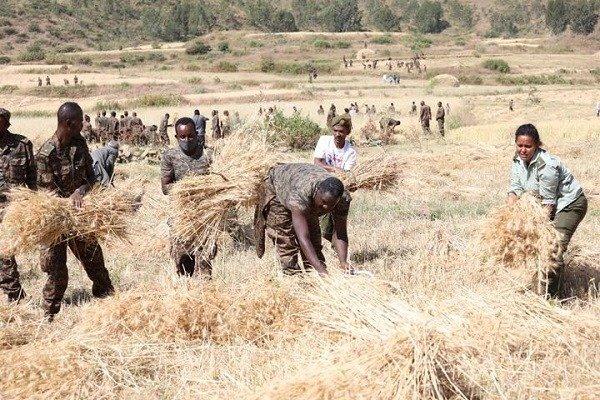 Ethiopia _ Defense _ Tigray