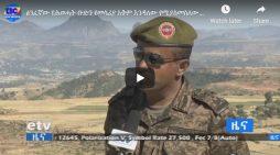 "General Abebaw Tadesse remark about "" TPLF junta"""
