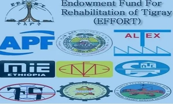 An Agenda to Reform Party Affiliated Companies in Ethiopia