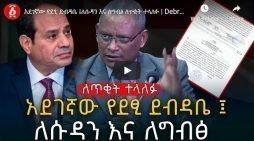Debretsion Gebremichael letter to Egypt, Sudan