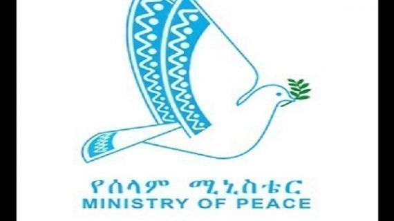 Tigray : Ethiopia's Ministry of Peace says Humanitarian response underway