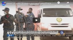 Sebhat Nega, nineteen others captured TPLF leaders appeared in court