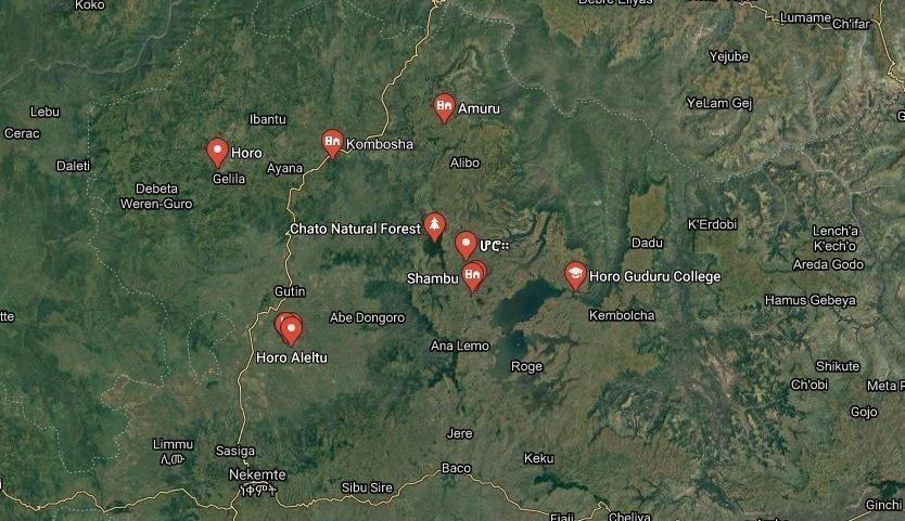 Amhara massacre _ Oromo regional state
