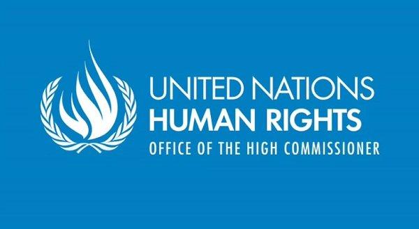 Human rights _ investigate _ tigray
