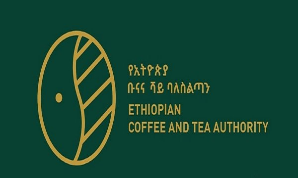 Ethiopia Coffee Export Ethiopian Business News