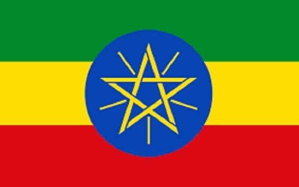 New York Times _ Journalist _ Ethiopia