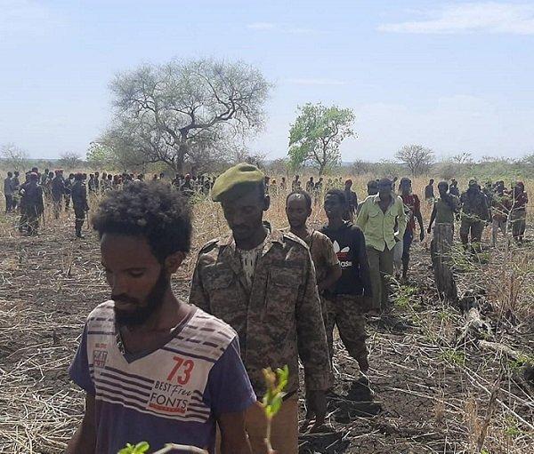 TPLF forces _ Sudan