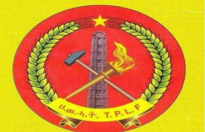 TPLF _ ceasefire _