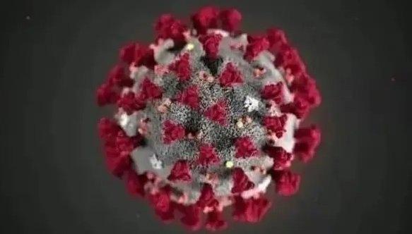 Active coronavirus _ June 23