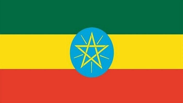 Eritrean Refugees _ Ethiopian News