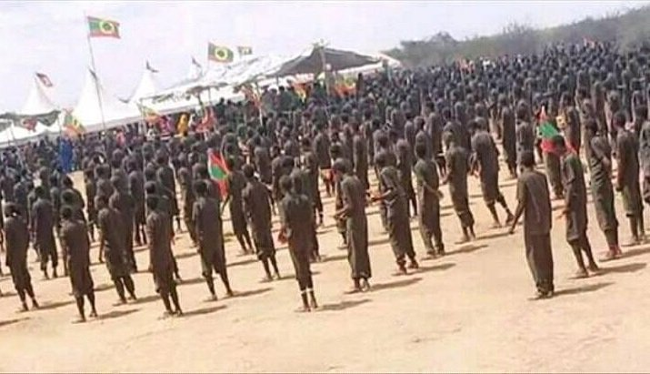 Oromo Liberation Front Terrorists _ Amhara massacre