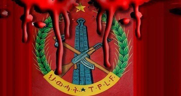 TPLF _ Kobo Massacre