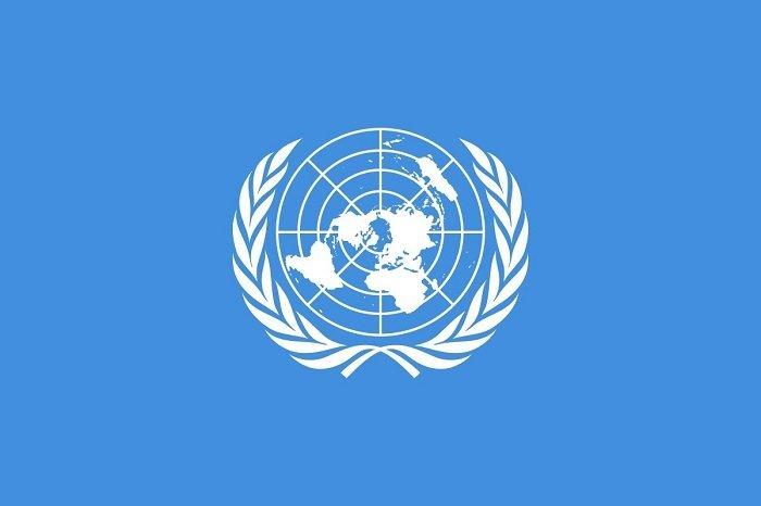UN Insider